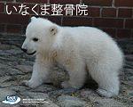 http://inakuma.web.fc2.com/