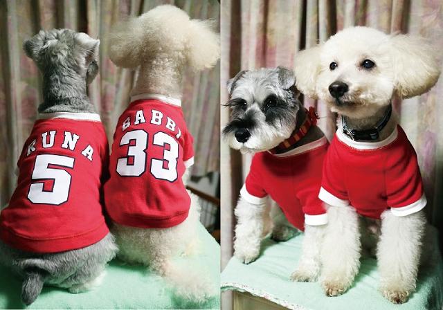 野球 ユニフォーム 犬服 名入れ